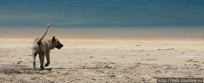 Рай, куда летают самолеты - остров Ко-Паям Остров Пайам, Таиланд