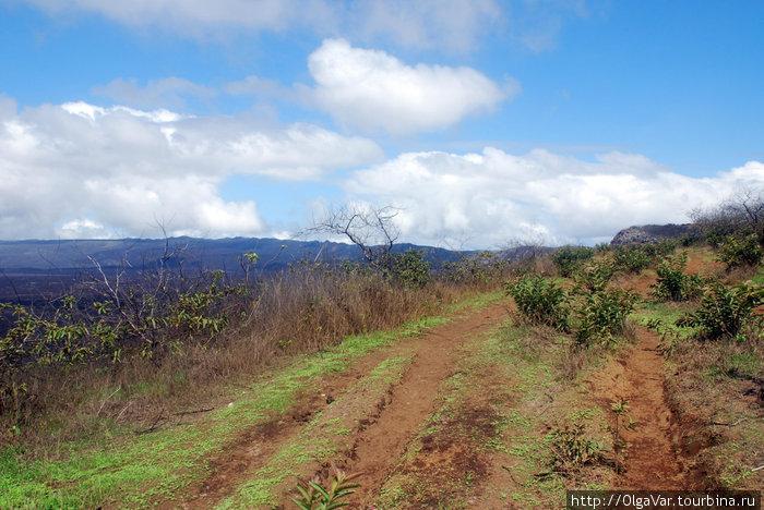 Дорогами вулкана Сьерра Н