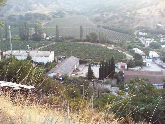 Виноградники и дома Малореченска оказываются внизу подо мной