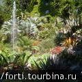 Сады Монтерелла