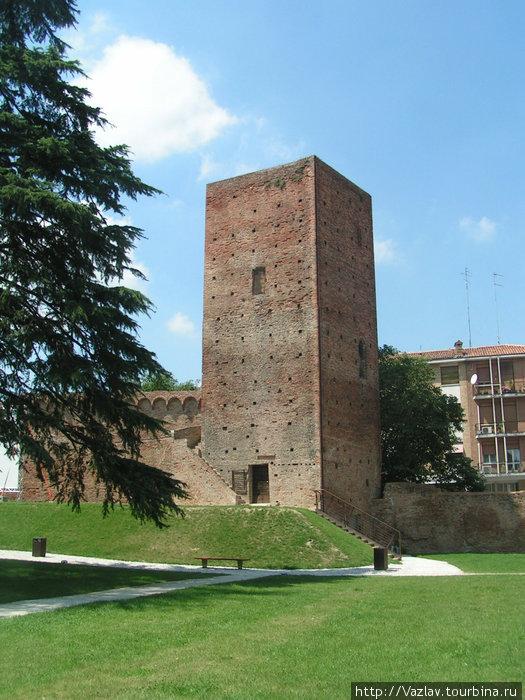 Башня и куски стен