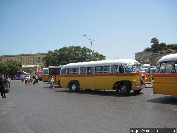 В Валетте нет двух одинаковых автобусов.