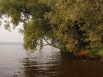 Берега Волги тихи и красивы