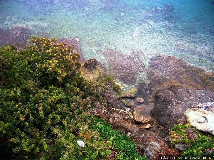 Вода Эгейского моря (Халкидики, Греция).