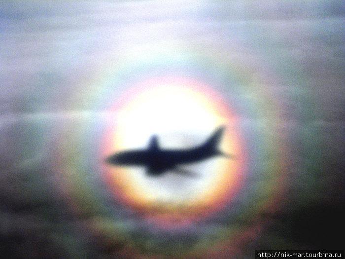 Оптическое чудо. Тень нашего самолёта на облаках. (Фото — дочери Алины).