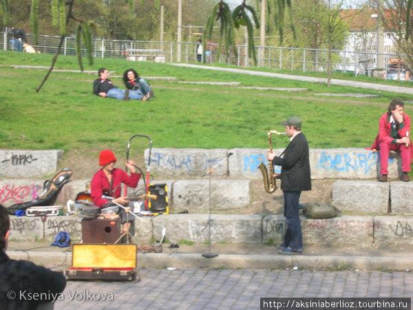 Музыканты — по выходным обычная картина в Мауэрпарке.