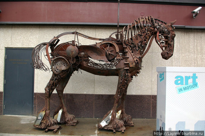 До кучи — железный скелет лошади.