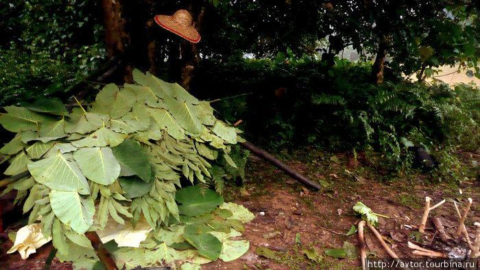 Самодельный шалаш в джунглях