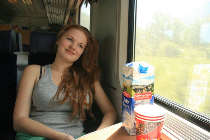 в австрийском поезде