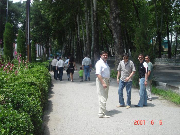 Тенистые улицы Душанбе.