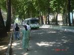 Душанбе, транспорта на улицах практически нет.