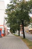 центр Ходонина