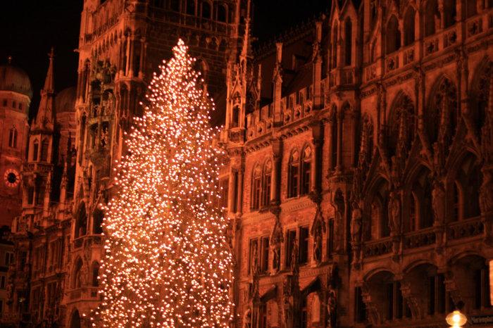 елка на Ратушной площади в Мюнхене