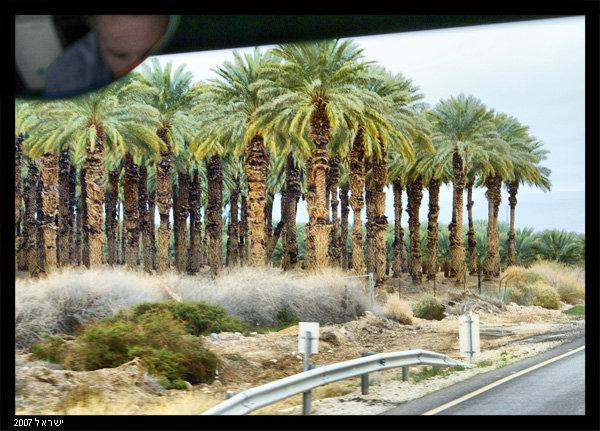 По дороге в Иерусалим