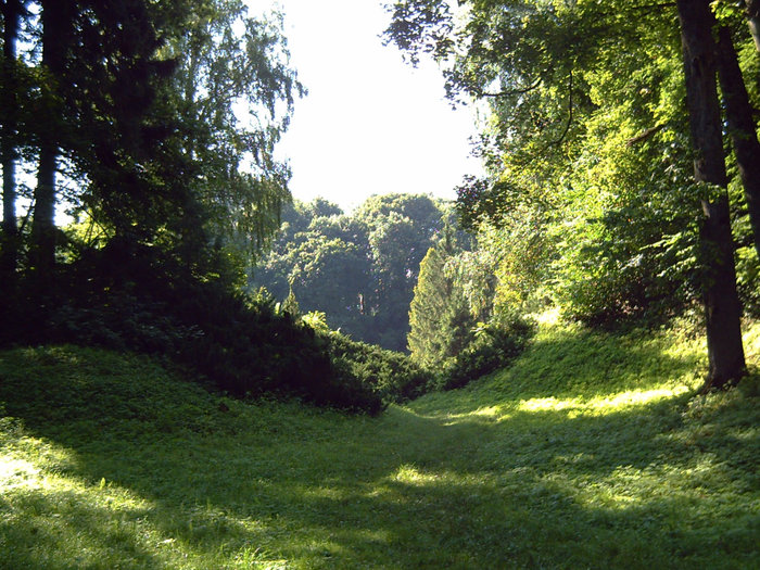 Ландшафтные изыски парка