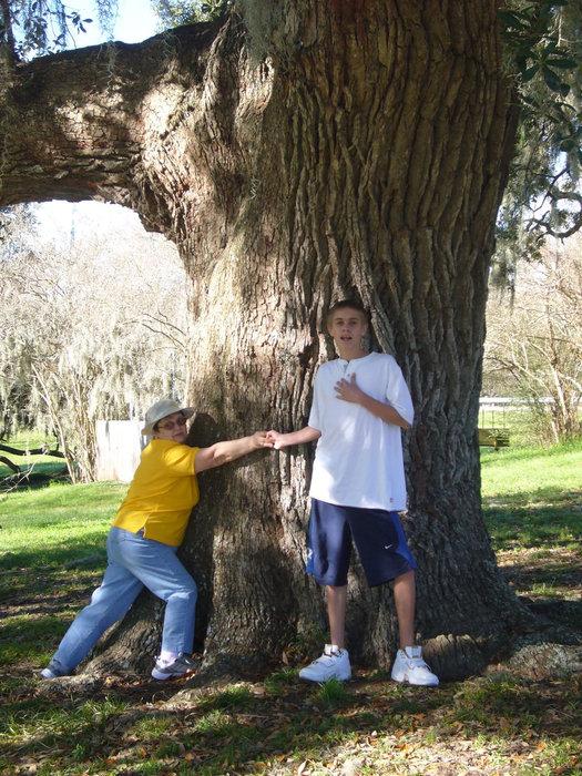 Пытаемся обнять ствол дерева.
