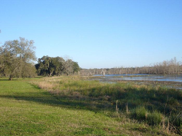 Пейзаж в парке — болота, озера.
