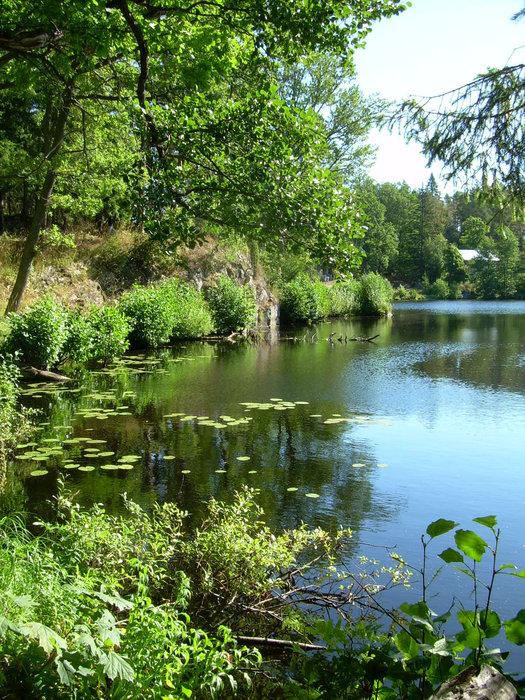 В прудах купаться нельзя. Охраняется природная и экологическая чистота.