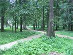 Парк рядом с озером