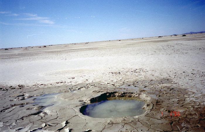 Болото в пустыне
