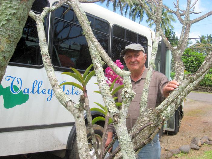 Экскурсионный микроавтобус на Мауи
