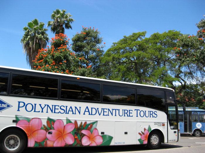 Экскурсионный автобус фирмы