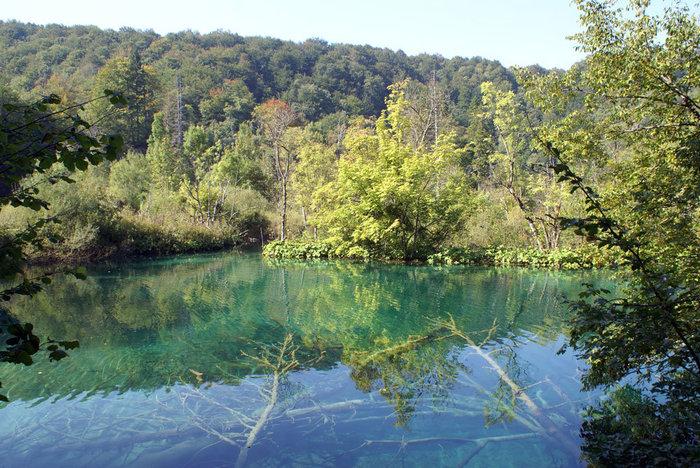 Одно из Плитвцких озер. Вода — чистейшая.