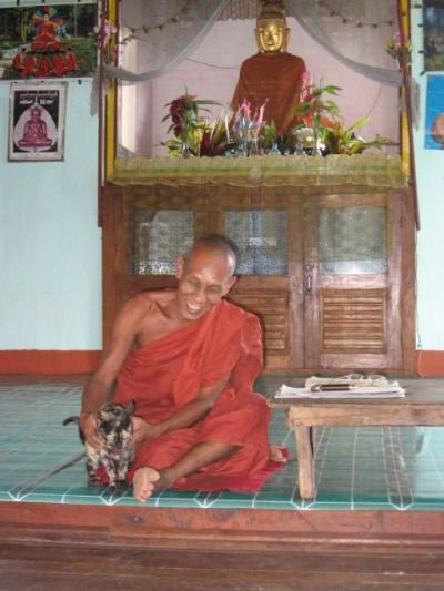 Монах с кошкой