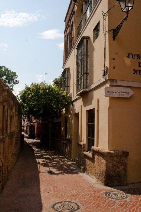 центр старого города, виноградники прямо на улицах