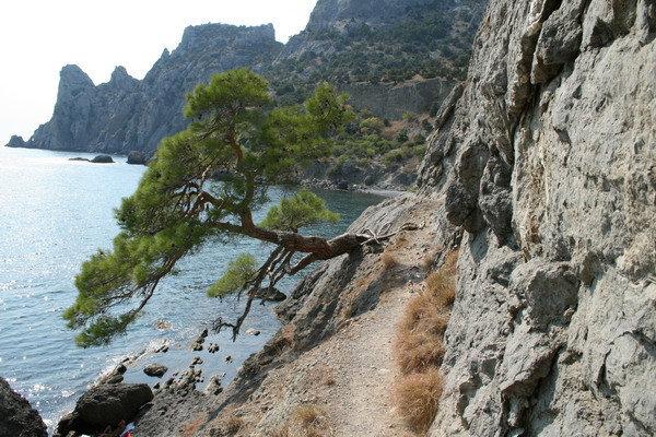 Тропка, по которой мы шли к Царскому пляжу по скале