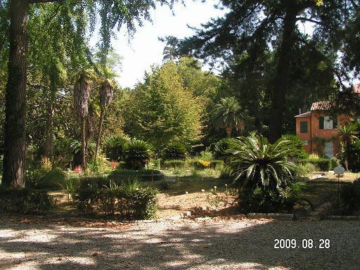 Взгляд на сад