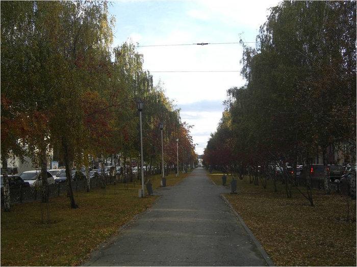Зеленая зона на Красном проспекте