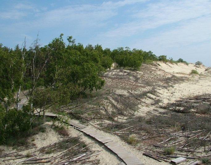 Узкие деревянные мосточки ведут к любому пляжу.