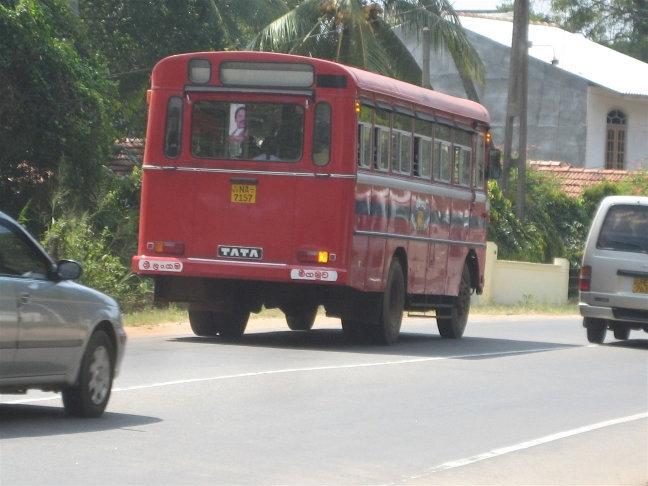 Сначала я подумал, что эта женщина пытается уехать автостопом, но потом я понял, что таким образом она останавливала автобус.