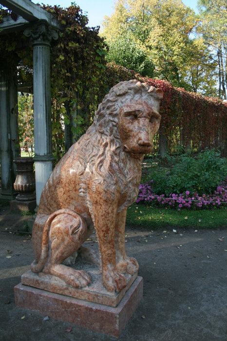 Лев у Перголы в Собственном саду