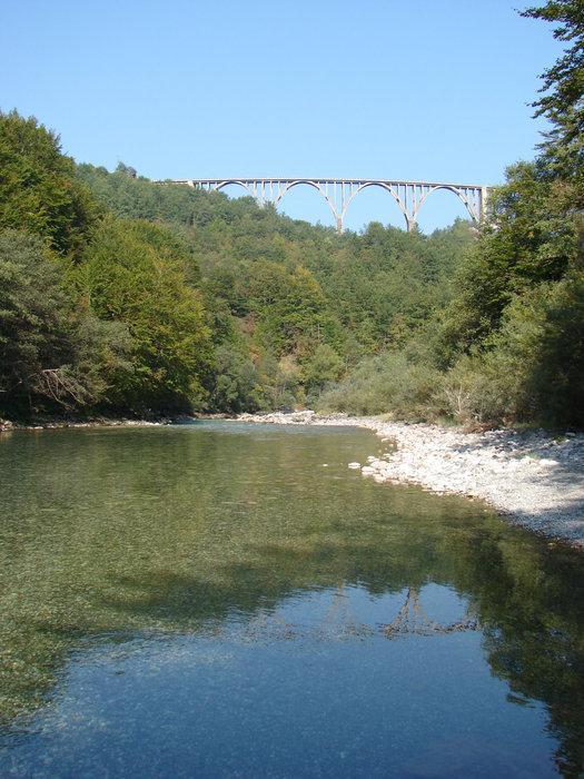 Вид на мост с реки