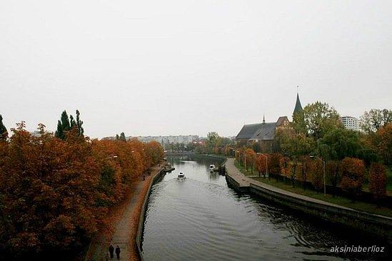 Река Прегель, справа — Кнайпхоф (остров Канта) // Октябрь 2007