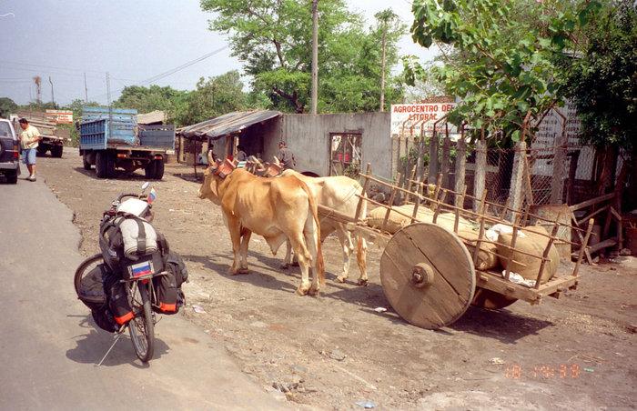 Колоритный транспорт