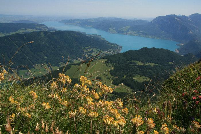 панорама с горы Шафберг