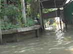 Жилые постройки на каналах