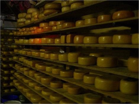 Головки сыра