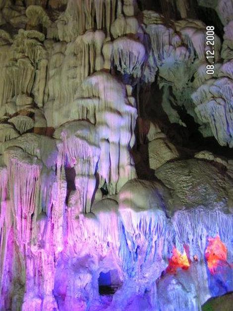 Каменные медузы