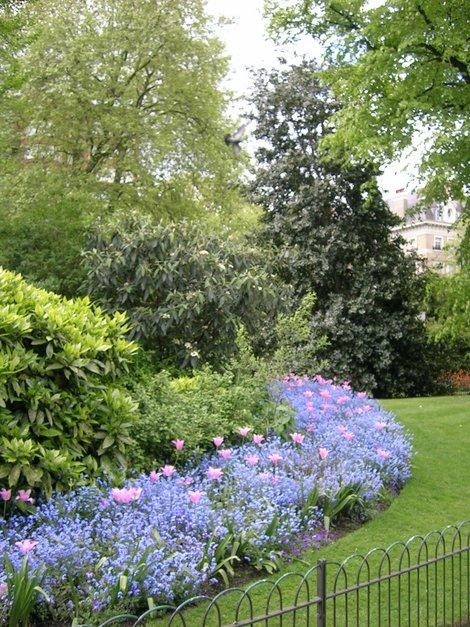 Несколько клумб из Кенсингтонских садов: раз...