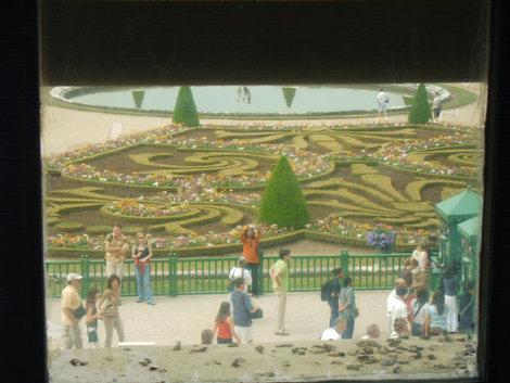 Вид на парк из окна дворца