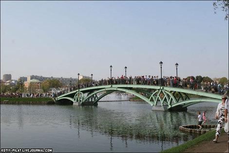 Новые мосты