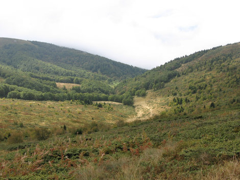 Национальный парк Биоградска Гора. Биоградска Гора, Черногория