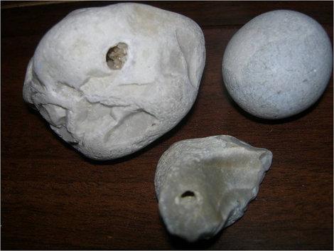 Камешки с побережья