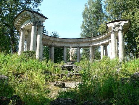 павловск парк фото