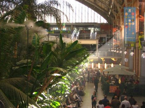 Джунгли на вокзале