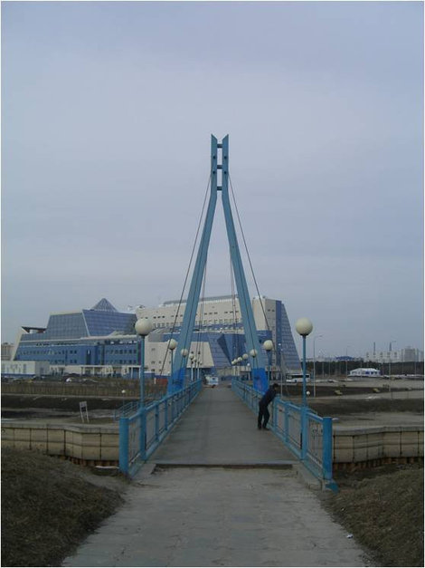 Мост, за ним здание Университета